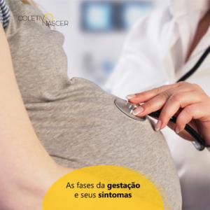 As Fases da Gestação e seus Sintomas